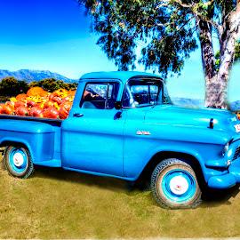 Pick Up by Andre Bez - Transportation Automobiles ( truck, blue, pumpkins, transportation, farming )