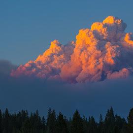 King Fire, September 17 by Richard Duerksen - News & Events Disasters ( forest fire, sacramento, california, cloud, king fire, fire, smoke )