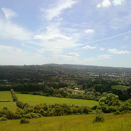 Box Hill UK by Lyz Amer - Landscapes Prairies, Meadows & Fields ( landscape )