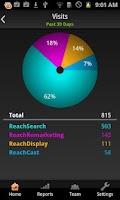 Screenshot of ReachLocal