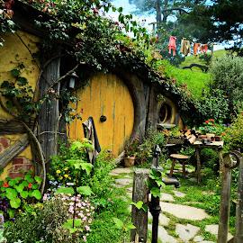 Hobbit hole by Krishna Rajeev - Buildings & Architecture Homes ( hobbit, new zealand, hobbiton )