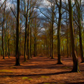 Colourful woods in spring by Ruth Holt - Digital Art Places ( south yorkshire, doncaster, woodland, spring, woods,  )