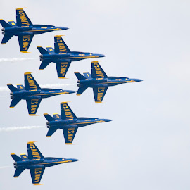 Blue Angles... by Rajeev Krishnan - Transportation Airplanes ( angles, navy, us navy, air show, blue angels )