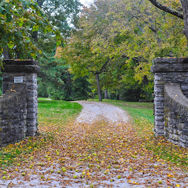 Stone Entry by Teresa Francis - Buildings & Architecture Other Exteriors ( fence, driveway, columns, stone, trees, rock, gravel road, stone wall, wall )
