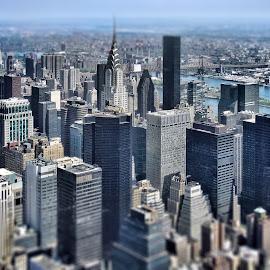 Manhattan Views by Laura Prieto - City,  Street & Park  Skylines ( skyline, skyscraper, manhattan, new york city, new york, chrysler building, usa, tilt shift )