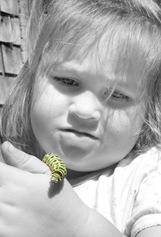 Alli BW caterpillar green