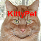 Kitty Pet icon