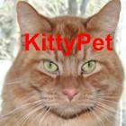 Kitty Pet icon