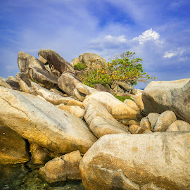 The Rocks by Kurnia Lim - Nature Up Close Rock & Stone ( nature, indonesia, landscape, belitung, rocks )