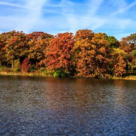 Fall on Herrick Lake by Rick Touhey - City,  Street & Park  City Parks ( fall colors, fall, fall trees, herrick lake )
