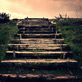 Stairway to heaven by Žaklina Šupica - Nature Up Close Other Natural Objects