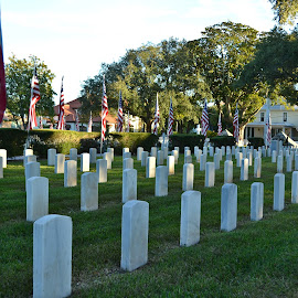Veterans Day at St. Augustine National Cemetery by Jan Herren - News & Events US Events ( flags, armory, patriotism, st. augustine, national cemetery,  )