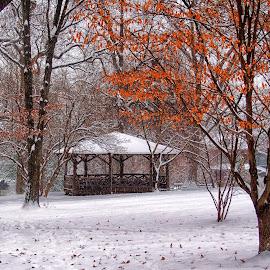 Park Gazebo in Winter by Jim Salvas - City,  Street & Park  City Parks ( winter, park, snow, trees, leaves, gazebo )