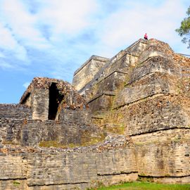 Altun Ha Fortress by Elaine Brixhoff - Buildings & Architecture Public & Historical ( temple, belize, maya, historic )
