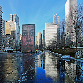 Millenium Park,Chicago by Dipali S - City,  Street & Park  Vistas ( winter, skyscrapers, snow, millenium park, buildings, reflections, chicago, downtown )