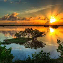 Good Morning from Merritt Island by Michael Purcell - Landscapes Sunsets & Sunrises (  )
