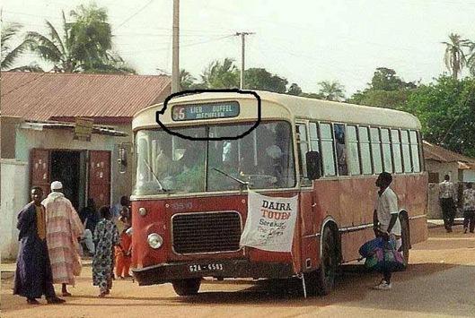 ze nemen gewoon de bus