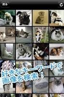 Screenshot of 最強画像検索2
