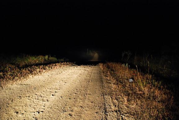 承德坝上草原-夜色-路景