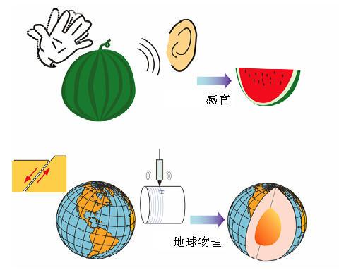 地球物理勘探和拍西瓜