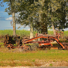 Antique farm equipment by Ron Olivier - Landscapes Prairies, Meadows & Fields ( antique farm equipment )