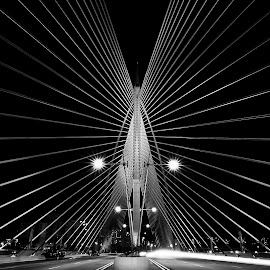 black n white by Genx Cheq - Buildings & Architecture Bridges & Suspended Structures ( structure, leading lines, black and white, malaysia, architecture, bridge, vertical lines, pwc,  )