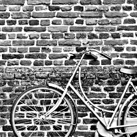 Bicycle by Anita Berghoef - Transportation Bicycles ( black and white, brick, bricks, transportation, wall, bicycle )
