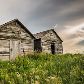 Prairie Granary by Chris Gibbs - Buildings & Architecture Other Exteriors ( clouds, sky, wood, alberta, barn, grass, prairie )