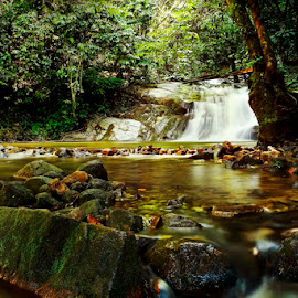 Beauty of nature by Muhasrul Zubir - Landscapes Travel