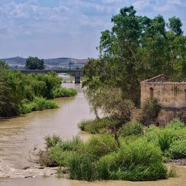 River Guadalquivir by Monika Schaible - Landscapes Travel ( sierra nevada, andalusia, guadalquivir, monika schaible, travel, cordoba, spain, river )