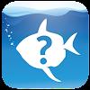 What Fish UK