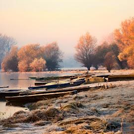 by Zoran Milosavljevic - Nature Up Close Water