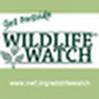 wildlife_watch