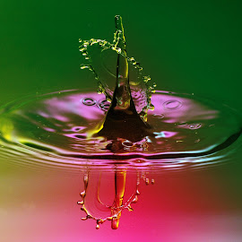 Colour Galore by Nirmal Kumar - Abstract Water Drops & Splashes