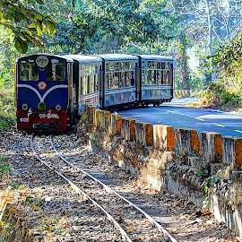 Darjeeling Himalayan Railway by Santanu Banerjee - Transportation Trains ( indian railways, himalayan railway, toy train, unesco, darjeeling rail, darjeeling )