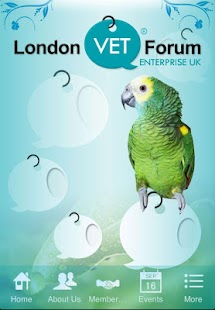 London Vet Forum - screenshot