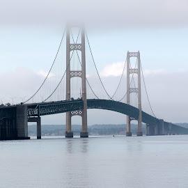 Bridge in the mist by Janet Higdon - Buildings & Architecture Bridges & Suspended Structures