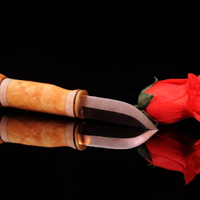 Dagger and Rose by Viryawan Vajra - Artistic Objects Other Objects