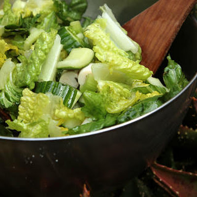 Crunchy Celery and Romaine Heart Salad