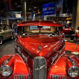 by Jose Figueiredo - Transportation Automobiles ( old, cars, show,  )