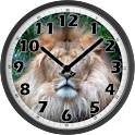 Lion Clock icon