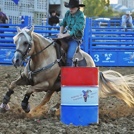 by Lisa Dean - Sports & Fitness Rodeo/Bull Riding