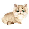 Cat Kind(Free) icon