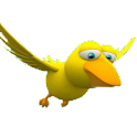 3D Bird(Free)