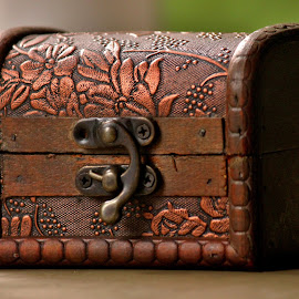The treasure guard by Anoop Namboothiri - Artistic Objects Antiques ( old, treasure, anoop namboothiri, chest, jewelry, antique )