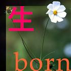 Ciclo de Vida - Nascido icon