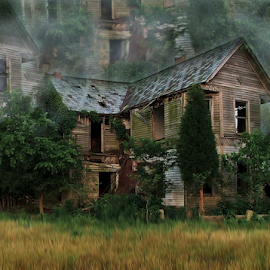 Faded Dreams by Julie Dant - Buildings & Architecture Decaying & Abandoned ( old house, illinois  abandoned homes, rural scenes, abandoned houses, decaying, abandoned )