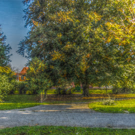 Bjelovar by Štefan Brajković - City,  Street & Park  City Parks ( bjelovar-bilogora county, bjelovar )