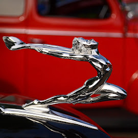 Hood Ornament by Michelle Anderson Eich - Transportation Automobiles ( hood ornament, classic car, vintage car, back to the 50's car show )