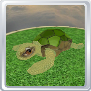 Virtual Pet 3D - Turtle
